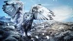 Обои Большая сова на фоне гор
