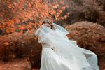 Обои Девушка в белом платье стоит на фоне осенней природы. Фотограф Анисимова Наталия