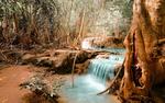 Обои Водопад, рядом покрытые илом деревья
