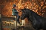 Обои Маленькая наездница играет с гривой вороного коня, сидя на ограждении загона, фотограф Анюта Онтикова