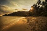 Обои Закат над тропическим берегом океана, фотограф Desislava Kuleshova