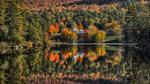 Обои Церковь в окружения леса у озера, by Massimo Squillace