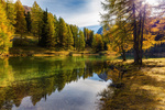 Обои Лес вдоль реки в октябре, фотограф Irca & Jacky K