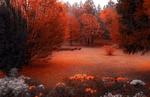 Обои Осенний парк в Sarajevo, Bosnia / Сараево, Босния, фотограф Mevludin Sejmenovic