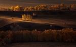 Обои Осенняя страда, фотограф marateaman