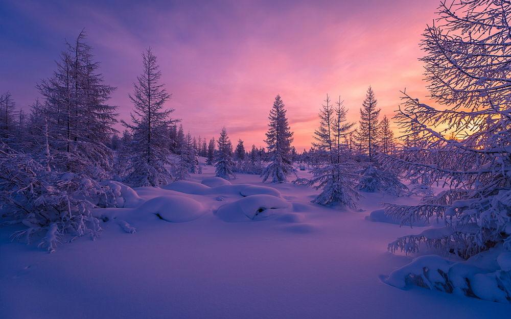 Обои для рабочего стола Зима в Горганах, Карпаты, Украина