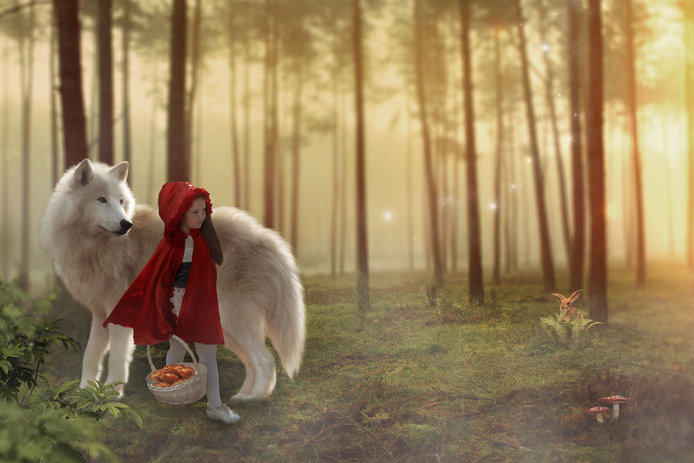 Обои для рабочего стола Красная шапочка и волк