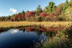 Обои Озерцо на лесной полянке, деревья в осеннем наряде на заднем плане, by Gerald Friedrich