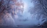 Обои Мужчина на зимней рыбалке стоит среди деревьев, покрытых морозным инеем, поселок Листвянка, Рязанская область, фотограф Михаил Дубровинский