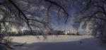 Обои Вид сквозь покрытые инеем ветки дерева на церковь Николая Чудотворца, село Черниж, Владимирская область, фотограф Dmitry Kupratsevich