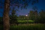 Обои Природа летом перед рассветом на фоне луны в небе, фотограф Евгений Луцко