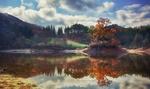 Обои Осенние деревья и их отражение на воде, фотограф Jaewoon U