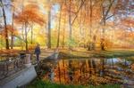 Обои Мужчина стоит на мостике, осень в Царском селе, фотограф Ed Gordeev