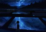 Обои Девушка шагает по сельской местности мимо рисовых полей, отражающих ночное небо, автор Gensuke
