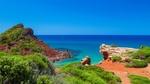 Обои Красивая растительность на побережье испанского острова Менорка
