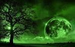 Обои Мертвое дерево на фоне огромной луны в зеленых тонах