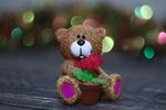 Обои Игрушечный медвежонок с цветком в горшке