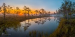 Обои Летний рассвет на болотно-озерном комплексе в Ленинградской области, фотограф Лашков Федор