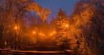 Обои Вечерний парк с зажженными фонарями, покрытый инеем, Ставрополь, фотограф Лашков Федор