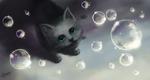Обои Котенок смотрит на мыльные пузыри, by xtwistedxamayax