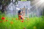 Обои Девочка-художница на поляне с красными маками