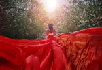 Обои Девушка в красном платье идет к свету по дорожке в цветущем саду, фотограф Malika Drobot