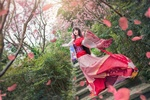 Обои Девушка-азиатка стоит на лестнице в цветущем саду