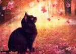 Обои Кошка сидит на осенней листве под листопадом, by Emeraldus