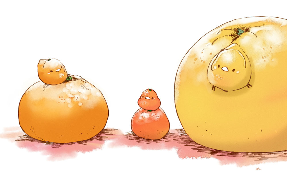 Обои для рабочего стола Апельсин, мандарин и грейпфрут и три птички