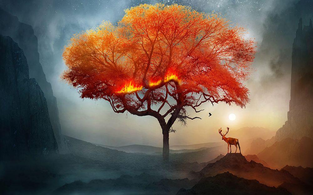 Обои для рабочего стола Олень смотрит на пожелтевшее дерево, art by Softyrider62