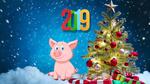 Обои Поросенок и надпись 2019 на новогоднем фоне