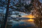 Обои Деревья у озера на фоне облачного неба. Фотограф Jorma Hevonkoski