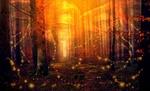 Обои Лес, пронизанный солнечными гирляндами и светом, момент волшебства, by Artie Navarre