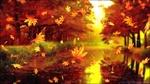 Обои Падающие кленовые листья за стеклом, на размытом фоне аллеи осеннего парка под дождем, by Oleg Gamulinskiy