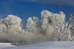 Обои Начало зимы в Сибири, фотограф Галина Хвостенко