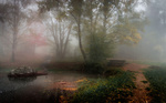 Обои Туманное утро в осеннем парке, фотограф Александър Александров