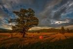 Обои Поздний вечер в Уймонской долине, фотограф Шевченко Николай