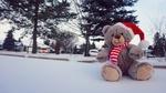 Обои Плюшевый мишка в новогоднем колпаке сидит на снегу на улице города