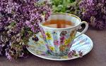 Обои Чашка чая на блюдце и цветы лаванды