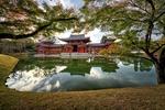 Обои Храм Kinkoku-ji в парке у пруда, Kyoto / Киото, Japan / Япония