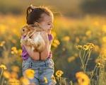 Обои Девочка с радостью и нежностью прижимает к себе кролика, стоя в цветущем поле, фотограф Suzy Mead