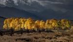Обои Autumn in Colorado / Осень в Колорадо, фотограф suk eun kim