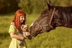 Обои Рыжеволосая девушка с тату на плече и в желтом платье держит маленькую собачку на руках перед мордой лошади. Фотограф Сергей Мелефара