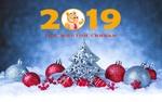 Обои Новогодние елочные игрушки, украшения, шары на снегу, (2019-год желтой свиньи)