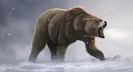 Обои Бурый рычащий медведь под снегопадом, by DikkeBobby