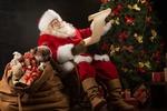 Обои Дед Мороз сидит у елки и читает послание