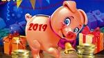 Обои Символ нового 2019 года хрюшка среди подарков
