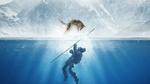 Обои Коди Смит-Макфи / Kodi Smit-McPhee в роли Кеда под водой и волк Альфа над ним в прыжке пытается его спасти, кадр из фильма Альфа / Alpha