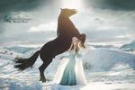 Обои Модель в образе королевы стоит рядом с лошадью, by Marketa Novak / Маркета Новак