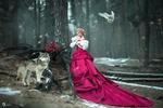 Обои Девушка в бордовом платье, волк и белая сова в лесу, у дерева с букетом роз на фоне падающего снега, фотограф Ярослава Громова